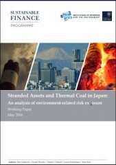 Stranded assets and thermal coal in Japan: an analysis of environment-related risk exposure